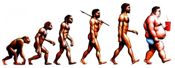 evolution-590x230
